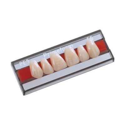 Dente Primeform Anterior/Inferior PK6 Cor 66 - Protétic